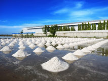 Heap of salt in the farm made of ocean water Royalty Free Stock Photography