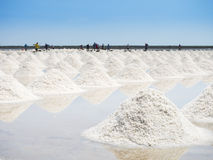 Heap of salt in the farm made of sea water Stock Images