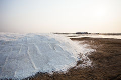 Heap of salt harvest in salt farm industry Royalty Free Stock Photo