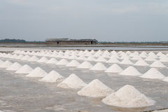 Field of salt pan Royalty Free Stock Photography