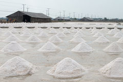 Field of salt pan Royalty Free Stock Images
