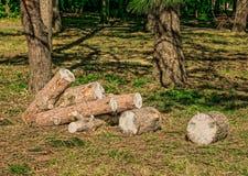 Heap of sawn pine logs Royalty Free Stock Photos