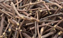 Heap of scattered licorice roots. Food background royalty free stock photo