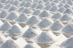 Heap of sea salt Stock Photography
