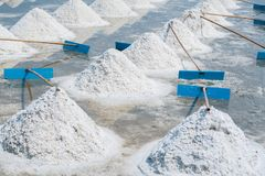 Heap of sea salt in original salt produce farm. Make from natural ocean salty water preparing for last process before sent it to industry consumer Royalty Free Stock Photos