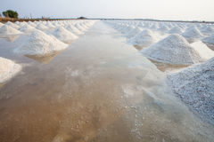 Heap of sea salt in original salt produce farm make from natural. Ocean salty water preparing for last process before sent it to industry consumer Royalty Free Stock Images