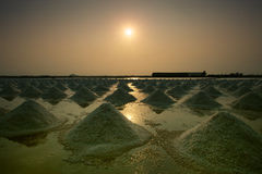 Heap of sea salt in original salt produce farm make from natural. Ocean salty water preparing for last process before sent it to industry consumer Royalty Free Stock Photo