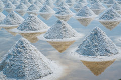 Heap of sea salt in original salt produce farm. Make from natural ocean salty water preparing for last process before sent it to industry consumer Royalty Free Stock Photo