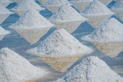 Heap of sea salt in original salt produce farm. Make from natural ocean salty water preparing for last process before sent it to industry consumer Royalty Free Stock Images