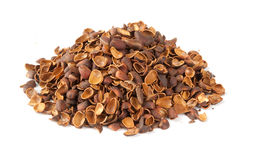 Heap of shell of pine nuts Royalty Free Stock Image
