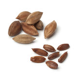 Heap of shelled and unshelled pili nuts on white background royalty free stock images