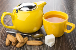 Heap of shortbread, teapot, sugar and cup of tea Stock Image