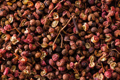 Heap of sichuan, japanese pepper. A heap of sichuan, japanese pepper on dark background Stock Photography