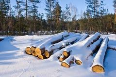 Heap of snowbound logs Royalty Free Stock Photos