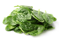 Heap of spinach leaves Stock Photo