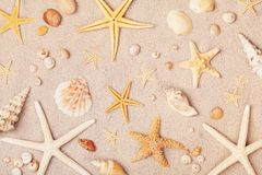 Heap of starfish and seashell on sand for summer holidays and travel background royalty free stock photography