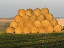 Heap of straw Royalty Free Stock Photo