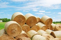 Heap of straw bales in summer field Stock Photo