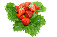 A heap of strawberries on green foliage. Isolated Royalty Free Stock Photo