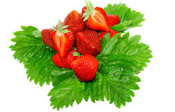 A heap of strawberries on green foliage. Isolated Stock Image
