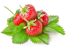 Heap strawberry Royalty Free Stock Photo