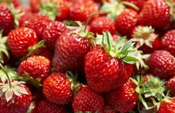 Heap of strawberry Royalty Free Stock Photo