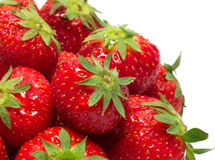 Heap of strawberry. Heap of ripe strawberry isolated Royalty Free Stock Image