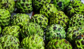 Heap of sugar apple for sale in market royalty free stock photo
