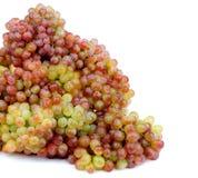 Heap of Sultana Grape Stock Image