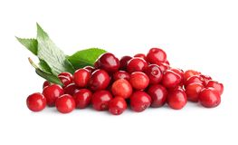 Heap of sweet cherries with leaves Stock Photography