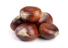 Sweet chestnut isolated on white background. Heap of sweet chestnut isolated on white background royalty free stock photography