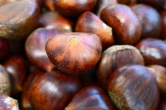 Heap of sweet chestnuts Stock Image