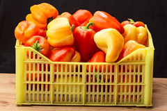 Heap of sweet peppers in a box Royalty Free Stock Photo