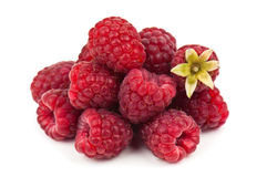 Heap of sweet ripe raspberries Royalty Free Stock Photo