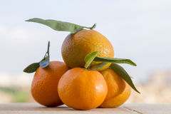 Heap of tangerines, flavored citrus Stock Photo