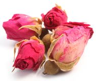 Heap of tea roses. Royalty Free Stock Image
