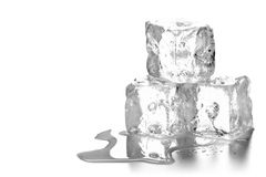 Heap of three melting ice cubes with water and reflection royalty free stock image