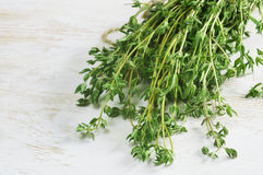 Heap of thyme Royalty Free Stock Photo