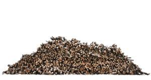 Heap of timber Stock Photos