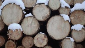 Heap of timber covered in snow on winter day. Heap of timber along road at sawmill covered in white snow on winter cloudy day stock video footage
