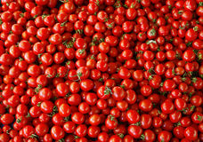 Heap of tomatoes Royalty Free Stock Image