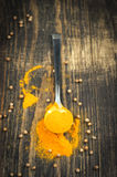Heap of turmeric on a metal spoon Royalty Free Stock Photo