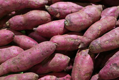 Heap of Uncooked Purple Sweet Potatoes, Background royalty free stock photo