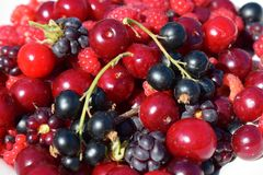 Heap of various berries at summer close up stock image