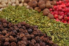 Heap of various kinds of dry spices Stock Photos