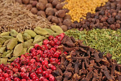 Heap of various kinds of spices Stock Images