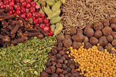 Heap of various kinds of spices Royalty Free Stock Image