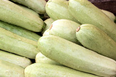 Heap of vegetable marrows. It is a lot of vegetable marrows. Horizontal photo Royalty Free Stock Photos