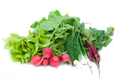 Heap of vegetables Royalty Free Stock Photography