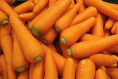 Heap of vibrant orange color carrots, for background. Or banner Stock Photography